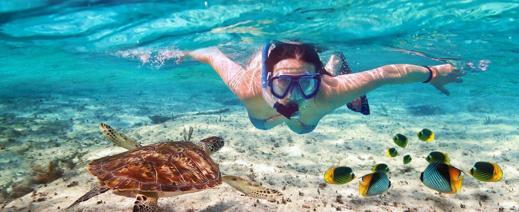 caribbean snorkeling shoretrips